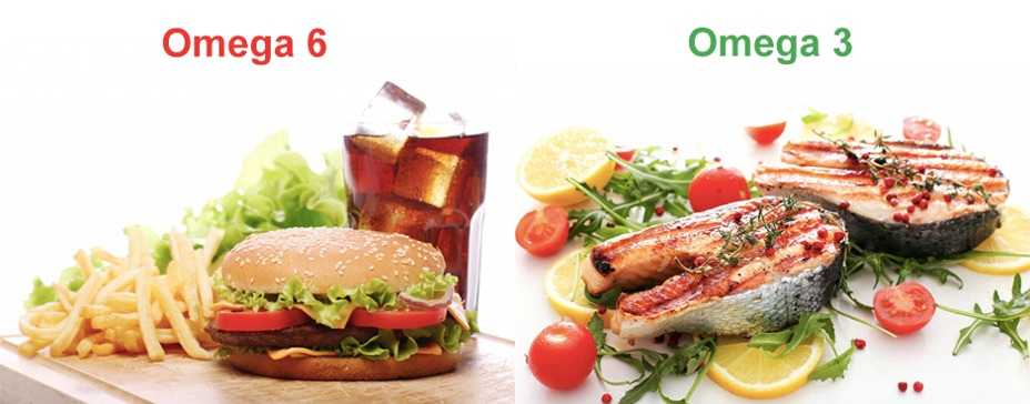 porovnanie fastfood a zdravá strava